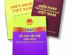Hoạt động lập pháp về sở hữu trí tuệ thông qua các bản hiến pháp của Việt Nam